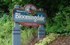 Village of Bloomingdale Entry Sign