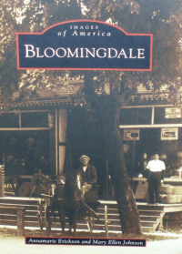 Images of America - Bloomingdale book cover